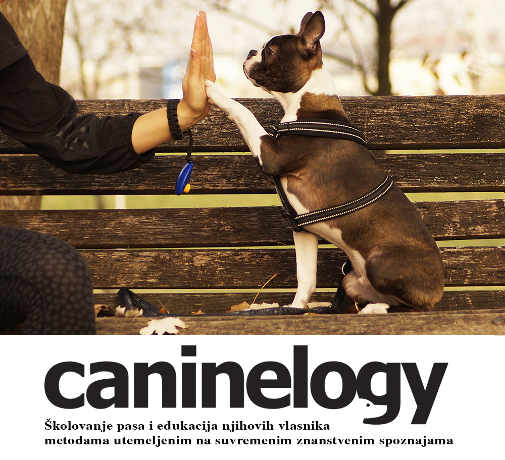 CanineLogy official