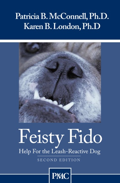 MR Feisty Fido