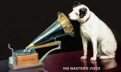 Razumiju li nas psi i bolje nego što smo mislili? Trebamo li paziti što pričamo?