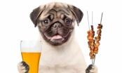 Larina kuhinja - kompletan obrok za pse (ili kako iskoristiti osjećaj krivnje vlasnika :))